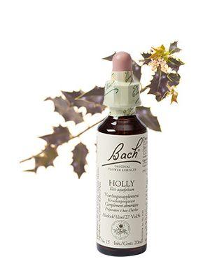 Bach Holly / Hulst 20 ml 15