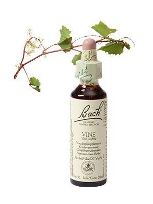 Bach Vine / Wijnrank 20 ml 32