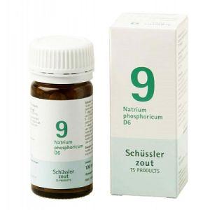 Sels de Schüssler nr 9 Natrium Phosphoricum D6 100 comprimés